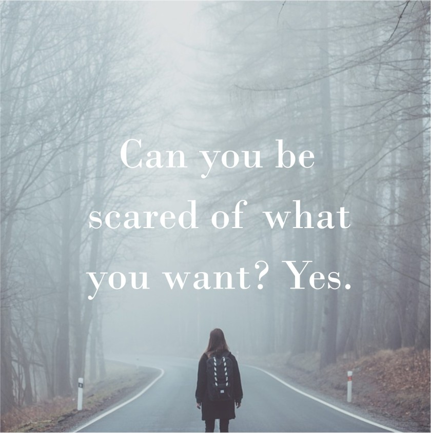 can-you-be-scared-of-what-you-want