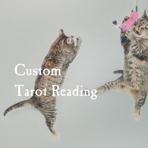 Custom Reading Updated